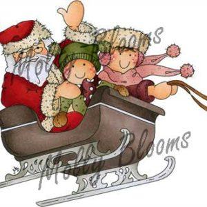Santas Sleigh Ride