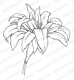 Open Lacy Lily