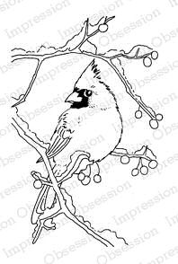 Snowy Branch Cardinal