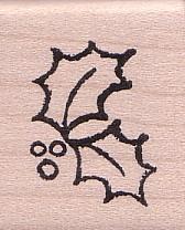 Ilex-Blätter