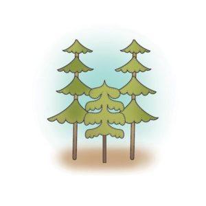Happy Camper - Tree Clusters