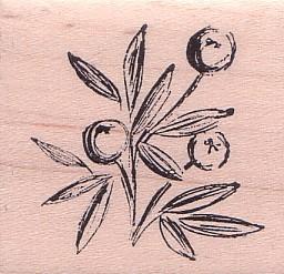 Skizzierte Beeren