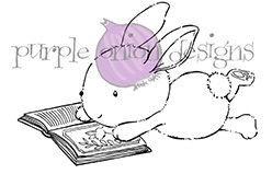 Zoey (Bunny Reading)